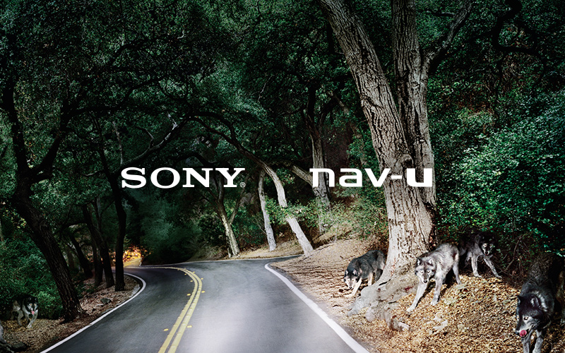 Sony NavU